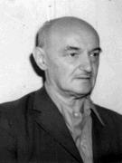 andreescu-traian